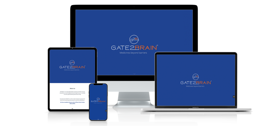 Agencia de diseño de paginas web para empresas y profesionales